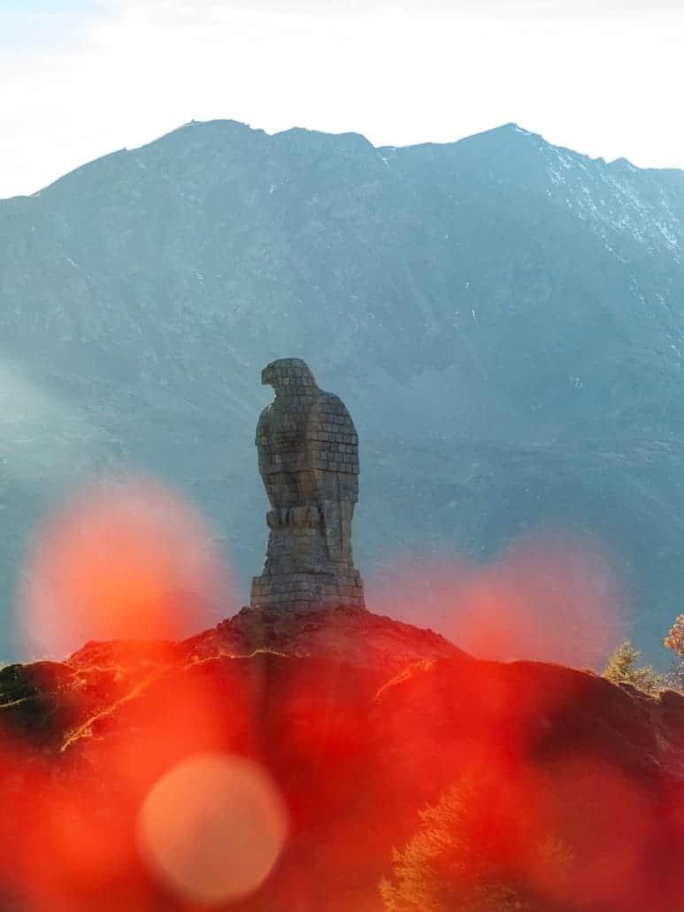 Simplon Adler im Herbst auf dem Simplonpass